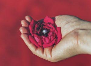мужская рука с цветком. фото