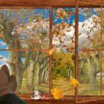 вид осени из окна дома. фото