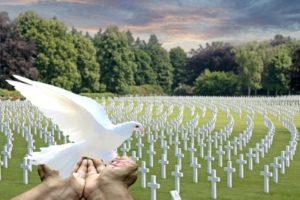 белая птица в руках и кладбище. фото