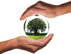 Защита природы. иллюстрация