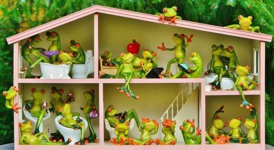 лягушки - соседи по дому. иллюстрация