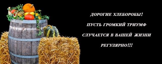 урожай. иллюстрация