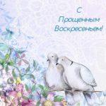 пара белых голубей. иллюстрация