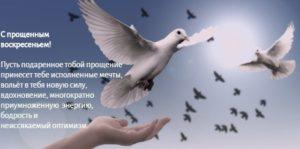 белые голуби в небе. иллюстрация