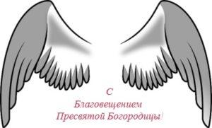 оперение ангела. иллюстрация
