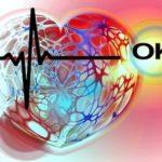 сердце и его кардиограмма. иллюстрация
