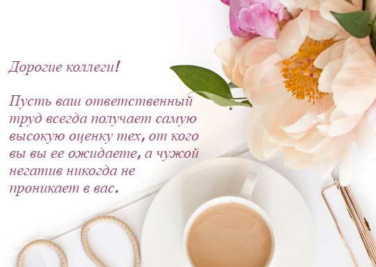 чашка кофе и цветок. фото