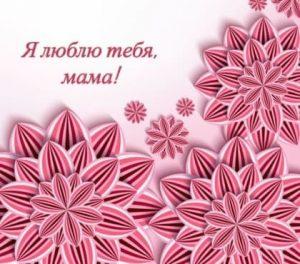розовые цветы и надпись. иллюстрация