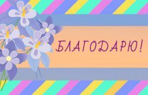 Букет цветов-незабудок и надпись. иллюстрация