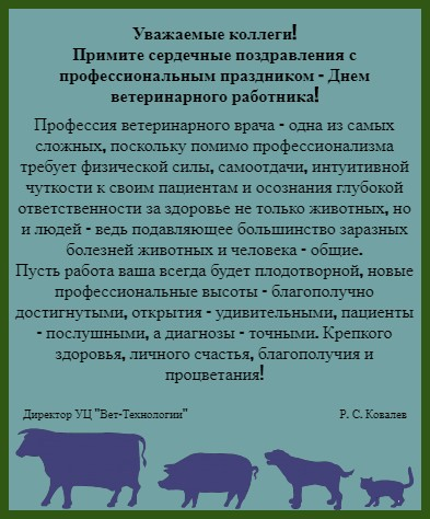фон в рамке с торжественным текстом. иллюстрация