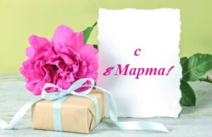 Цветок, коробка и карточка. иллюстрация
