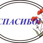 Овал с цветком и надписью. иллюстрация