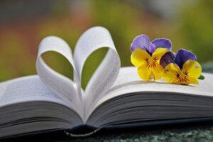 Фиалки на страницах книги. фото