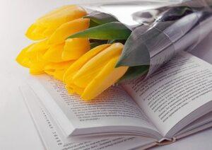 Желтые тюльпаны поверх раскрытой книги. фото